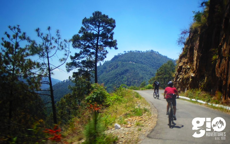 public/images/products/shimla-cycling1.jpg